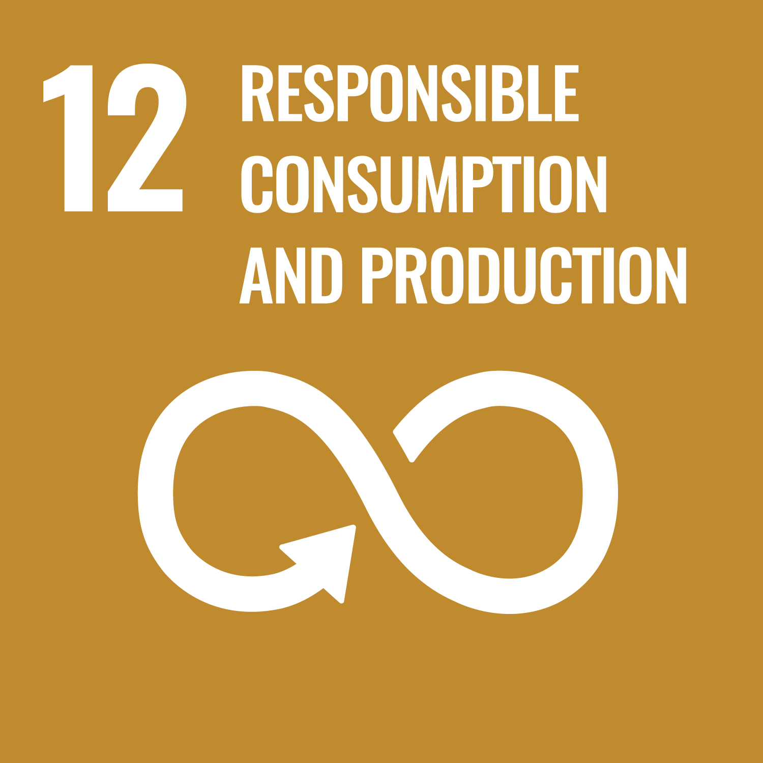 Responsible Consumption and Production SDG icon